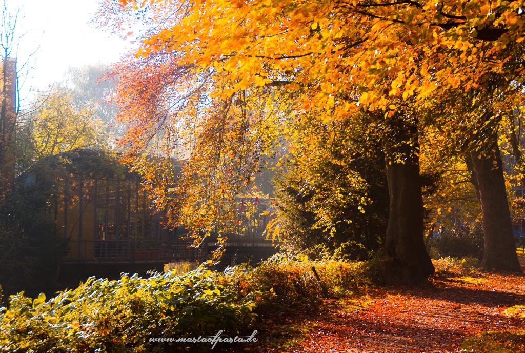 buxtehude-park